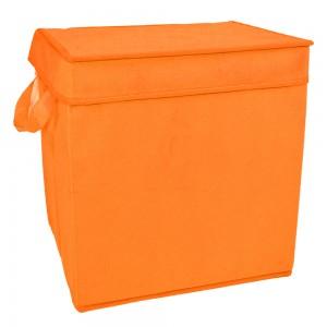 Box portatutto fluo con...
